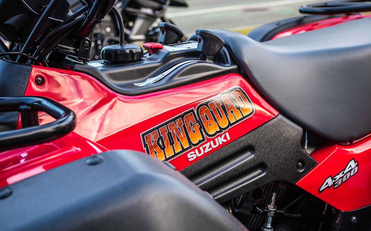 Used Suzuki KingQuad 300 2018 For Sale ⋆ Motorcycles R Us